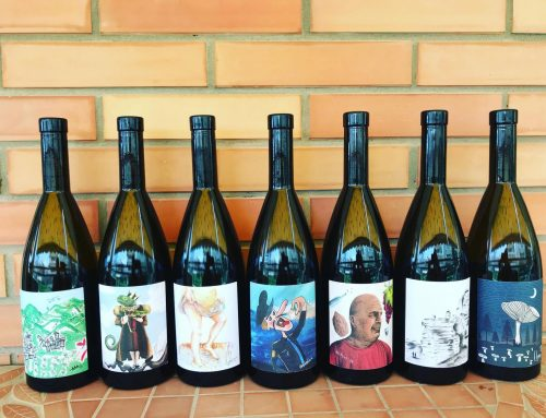 The Microvinifications of Vouni Panayia